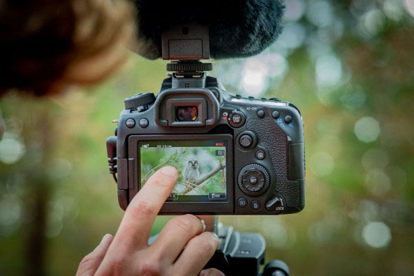 5 Best DSLR Camera Recommendations for Photography in 2021